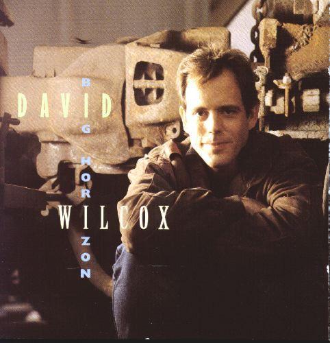 cover of David Wilcox: Big Horizon